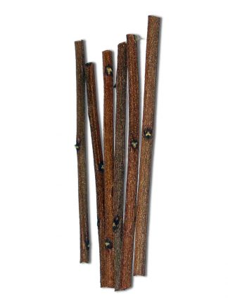 Neem Sticks